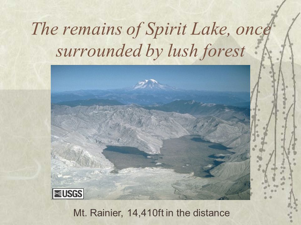 The remains of Spirit Lake, once surrounded by lush forest