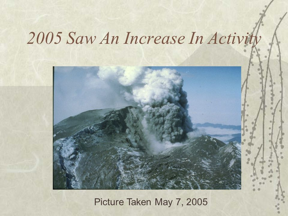 2005 Saw An Increase In Activity