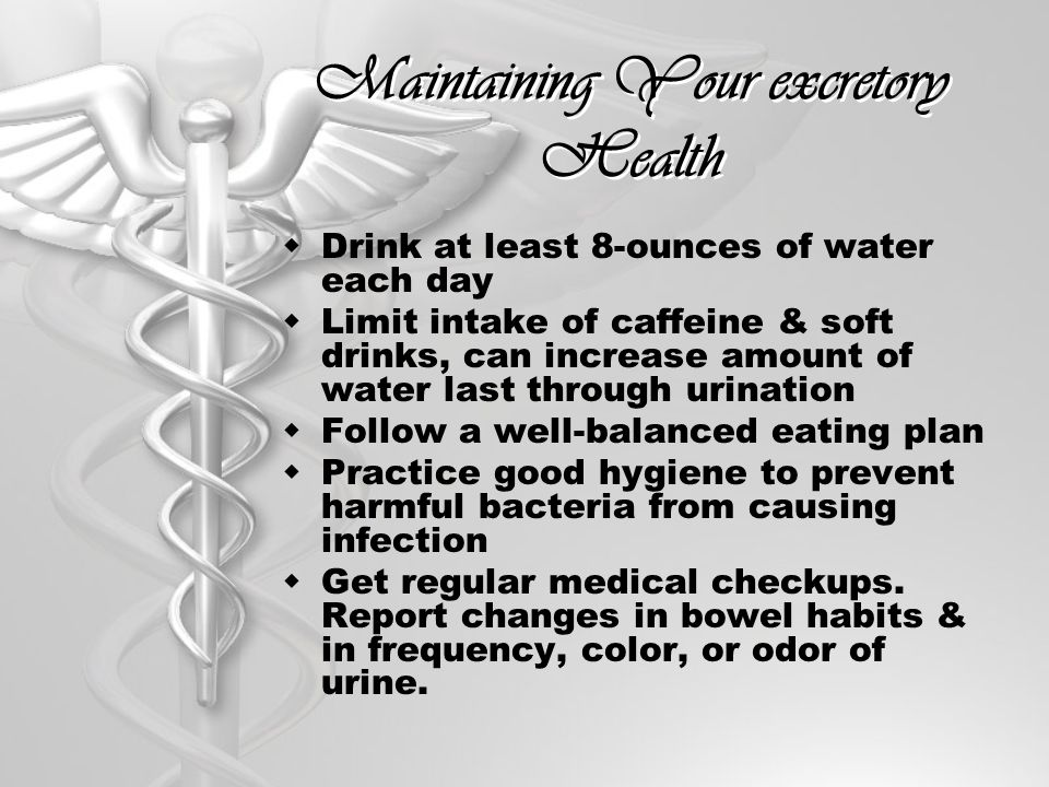 Maintaining Your excretory Health