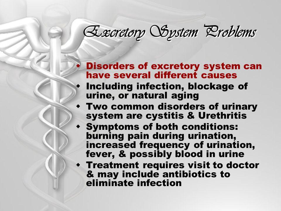 Excretory System Problems