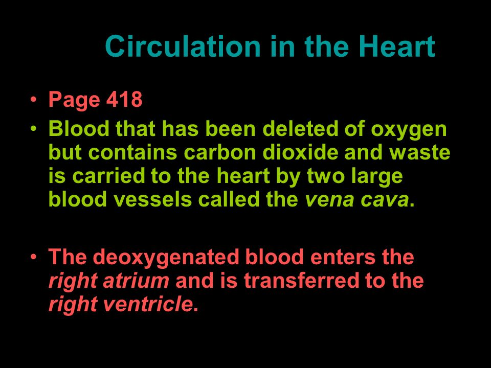 Circulation in the Heart
