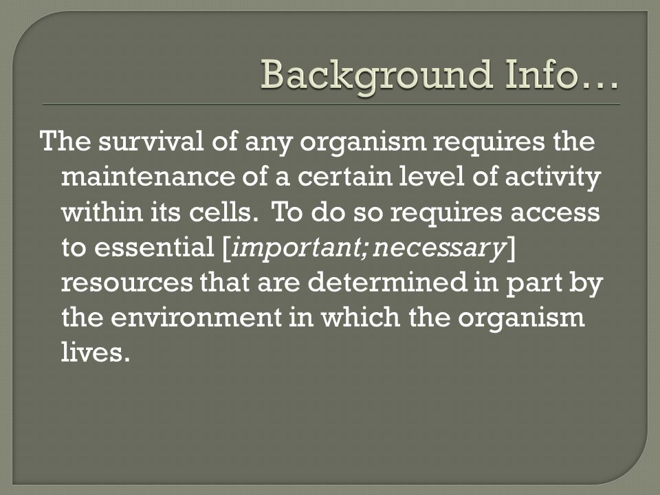 Background Info…