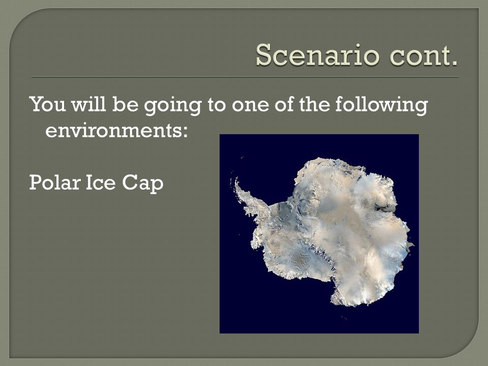 Scenario cont. You will be going to one of the following environments: Polar Ice Cap