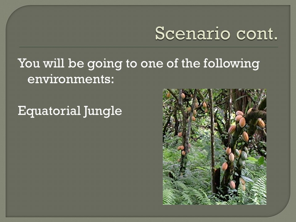 Scenario cont. You will be going to one of the following environments: Equatorial Jungle