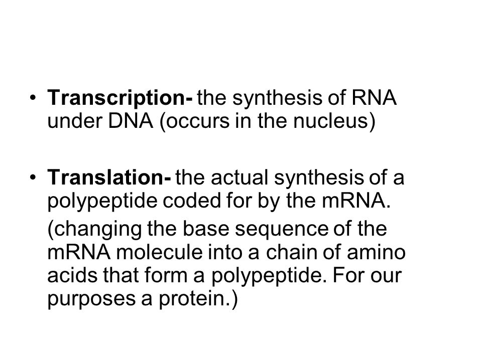 Transcription- the synthesis of RNA under DNA (occurs in the nucleus)