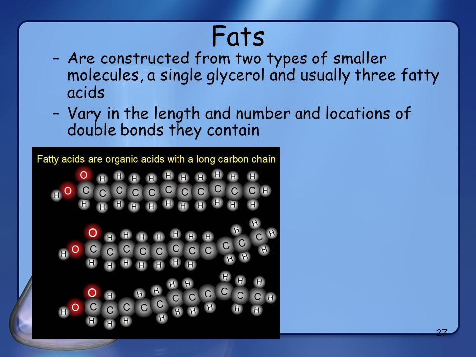 Fats Are constructed from two types of smaller molecules, a single glycerol and usually three fatty acids.