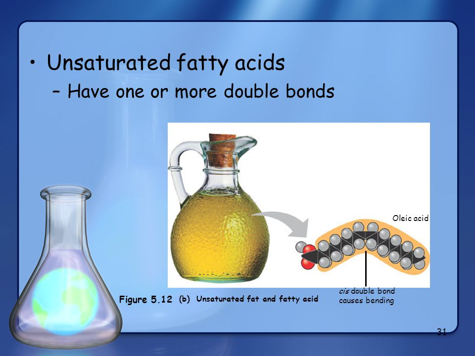 (b) Unsaturated fat and fatty acid