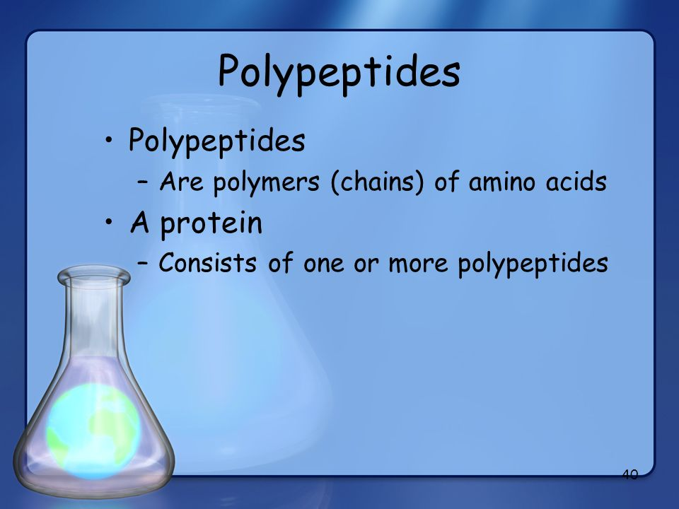 Polypeptides Polypeptides A protein