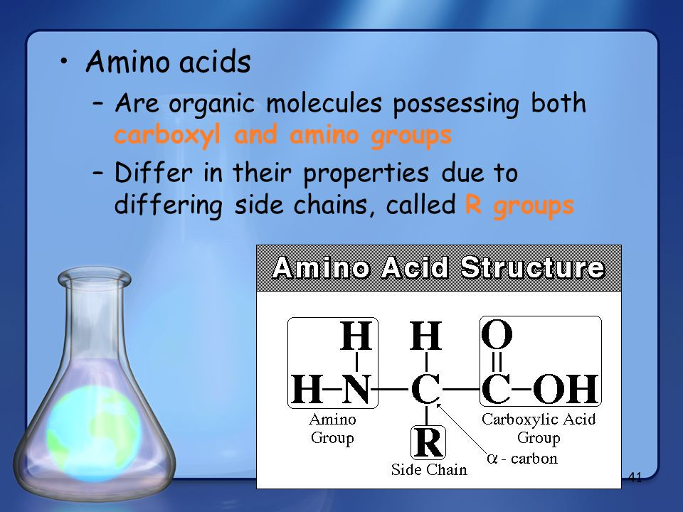 Amino acidsAre organic molecules possessing both carboxyl and amino groups.