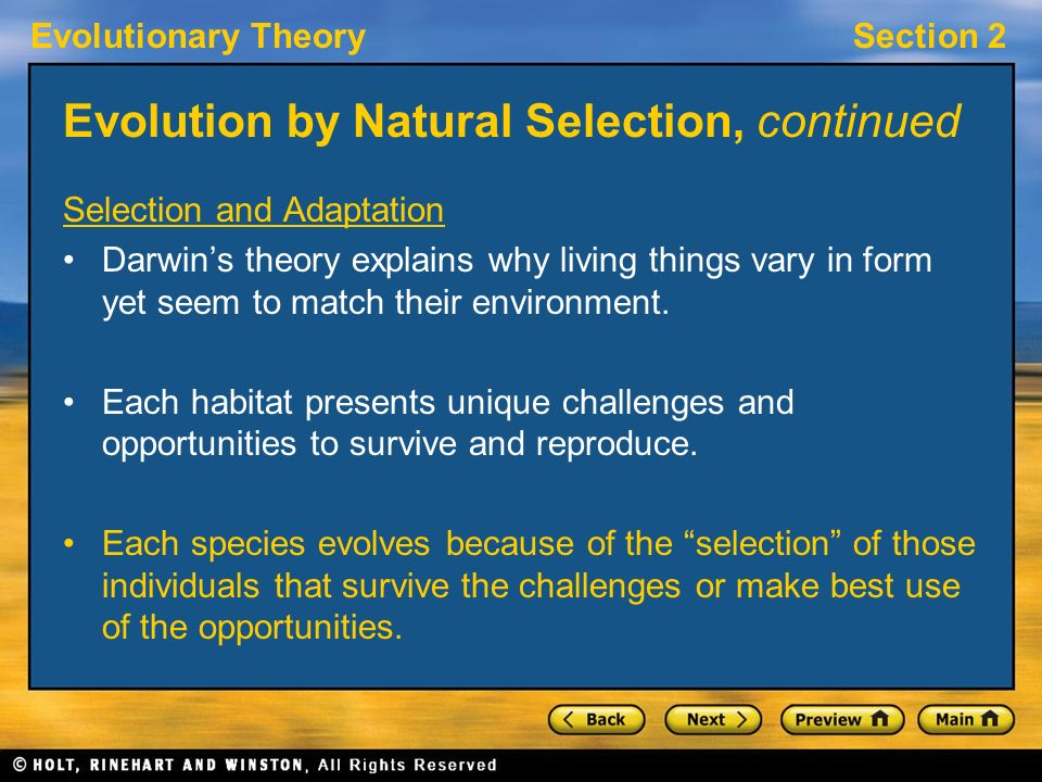 natural selection matchmaking Management advice from charles darwin  its insights about natural selection in plants and animals offer  critical mix of diagnostic and matchmaking.
