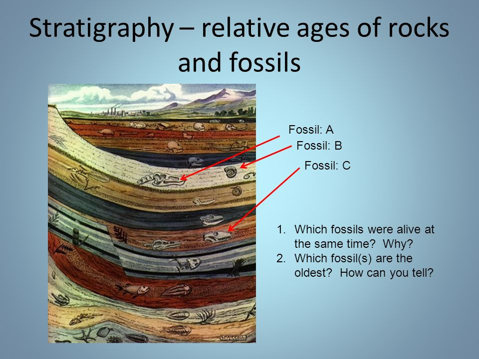 Stratigraphy – relative ages of rocks and fossils