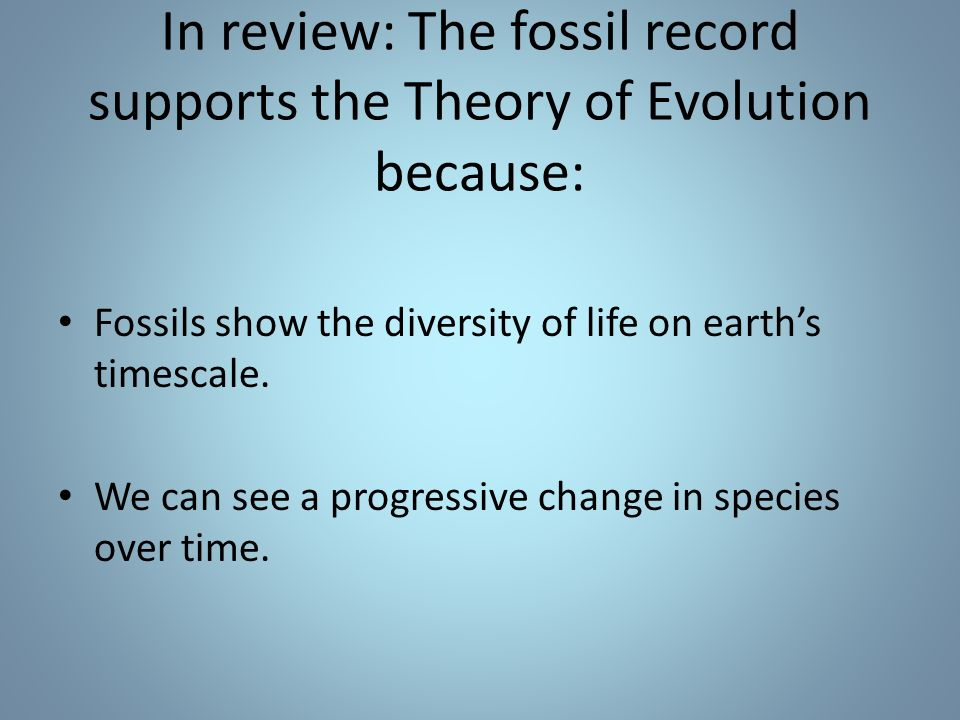 In review: The fossil record supports the Theory of Evolution because: