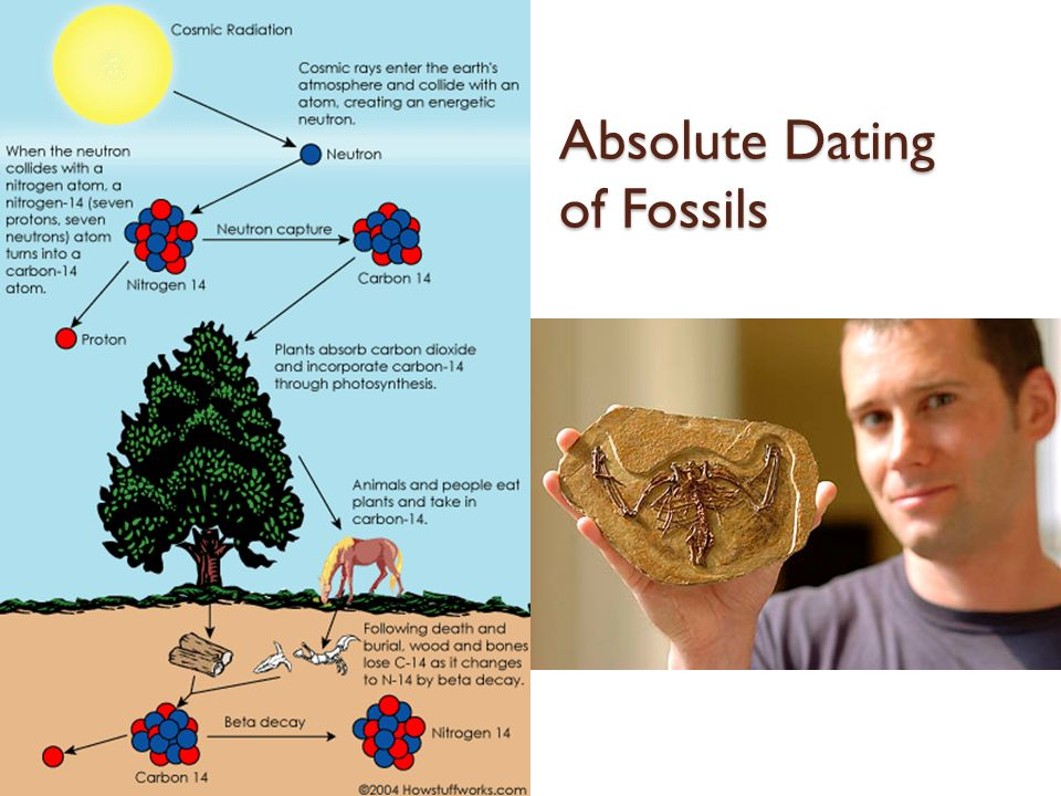 What does absolute dating tell you