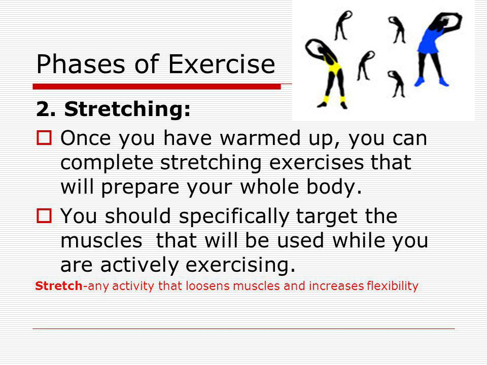Phases of Exercise 2. Stretching: