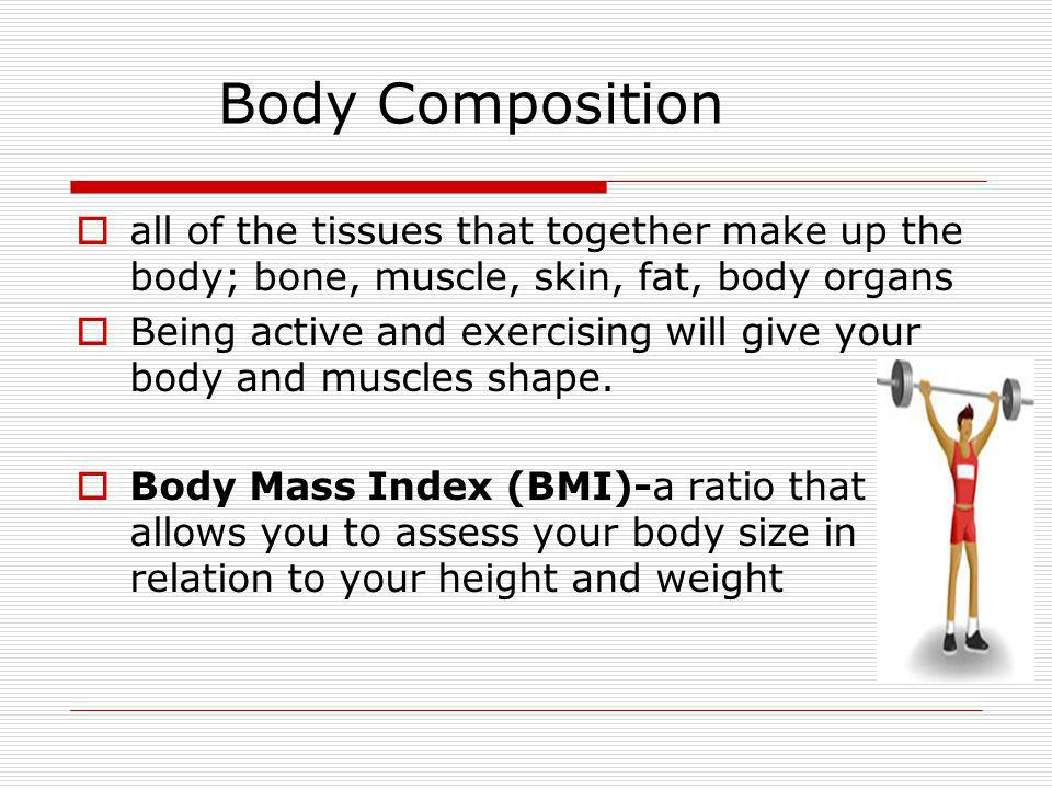 Body Composition all of the tissues that together make up the body; bone, muscle, skin, fat, body organs.