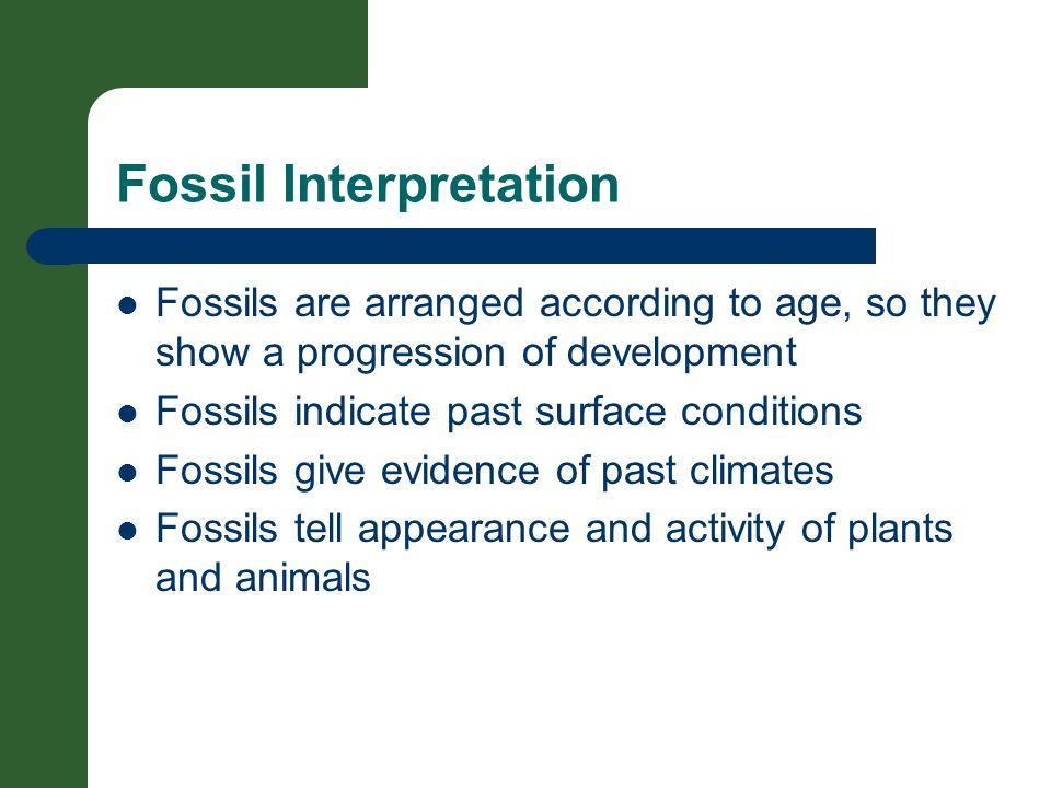 Fossil Interpretation