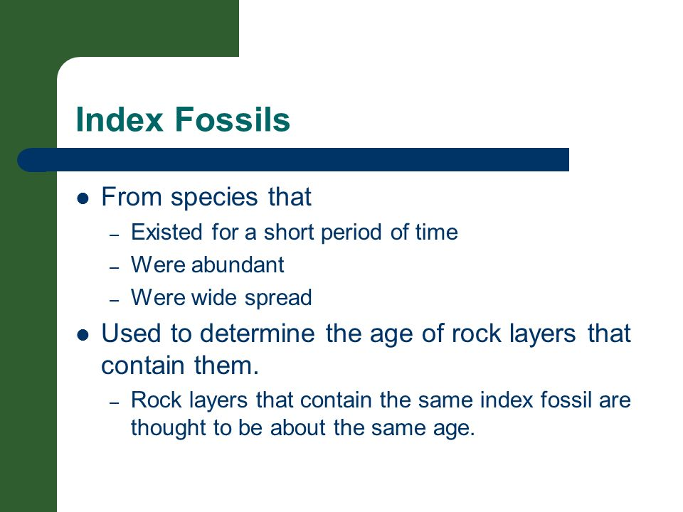 Index Fossils From species that