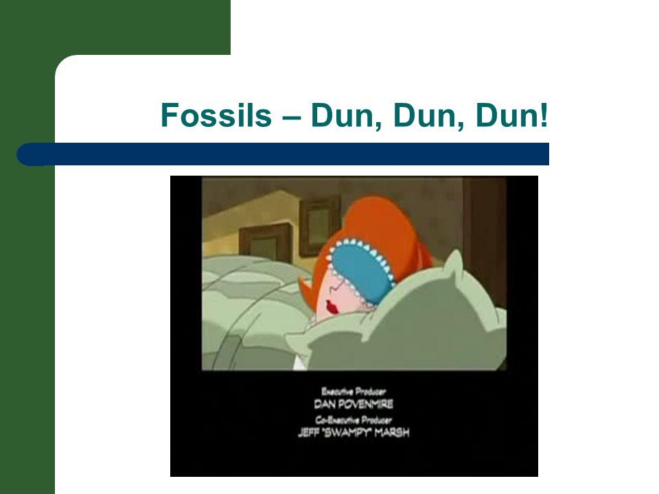 Fossils – Dun, Dun, Dun!