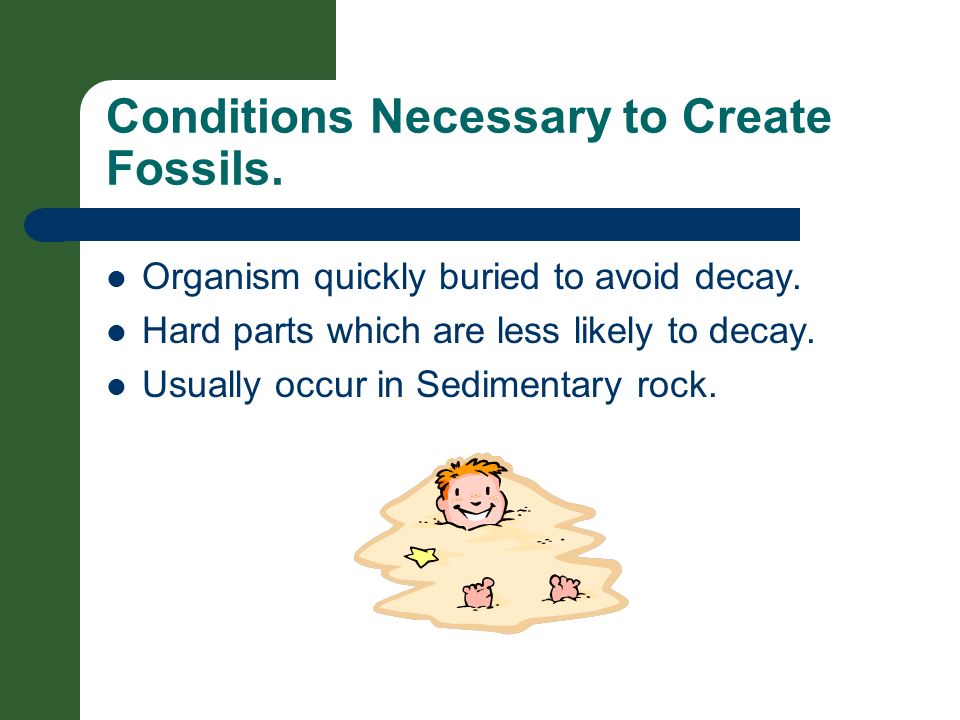 Conditions Necessary to Create Fossils.