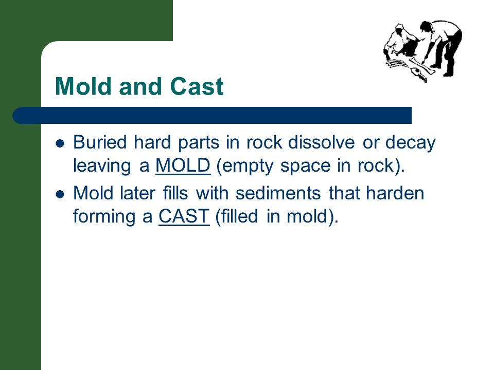 Mold and Cast Buried hard parts in rock dissolve or decay leaving a MOLD (empty space in rock).
