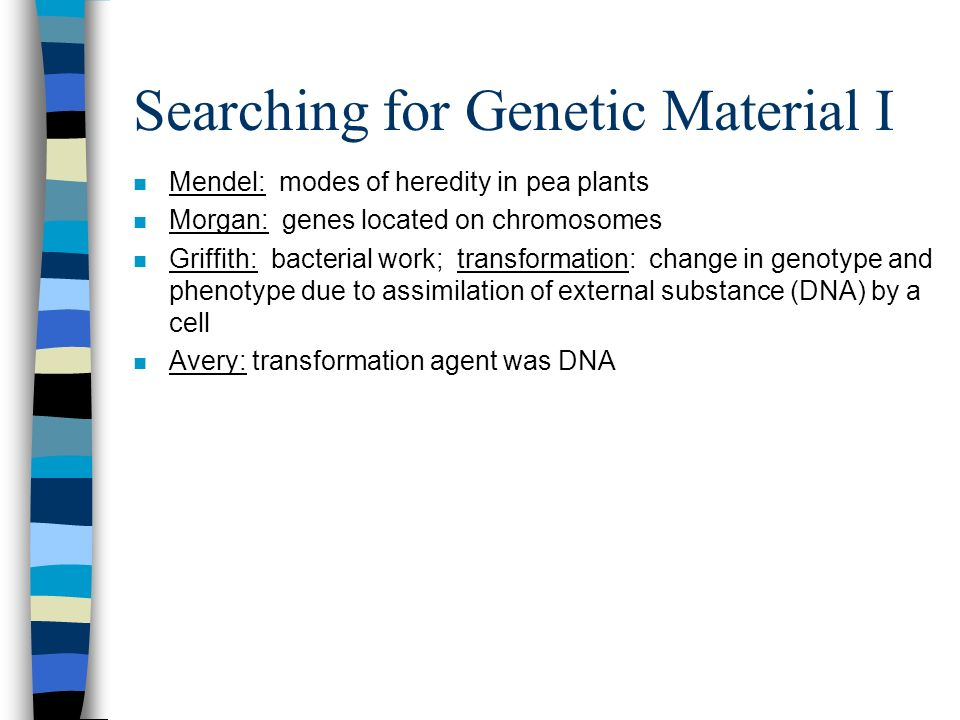 Searching for Genetic Material I