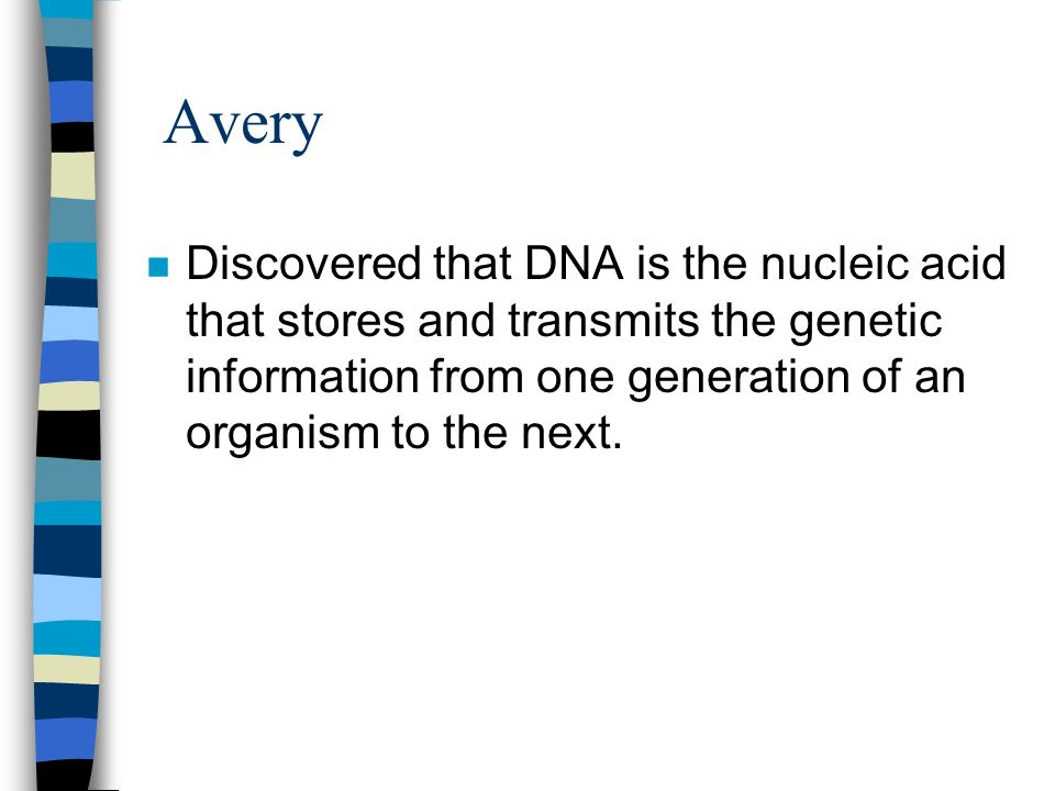 Avery Discovered that DNA is the nucleic acid that stores and transmits the genetic information from one generation of an organism to the next.