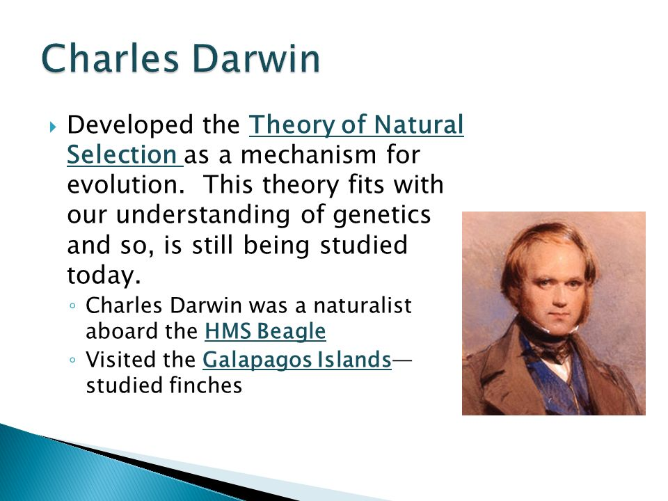 understanding charles darwins theory The work of charles darwin has implications far beyond science  challenge to  traditional religious understandings of the creation of the world and humankind   darwin's theory of evolution has also prompted a renewal of theological.