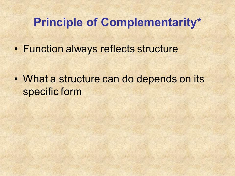 Principle of Complementarity*