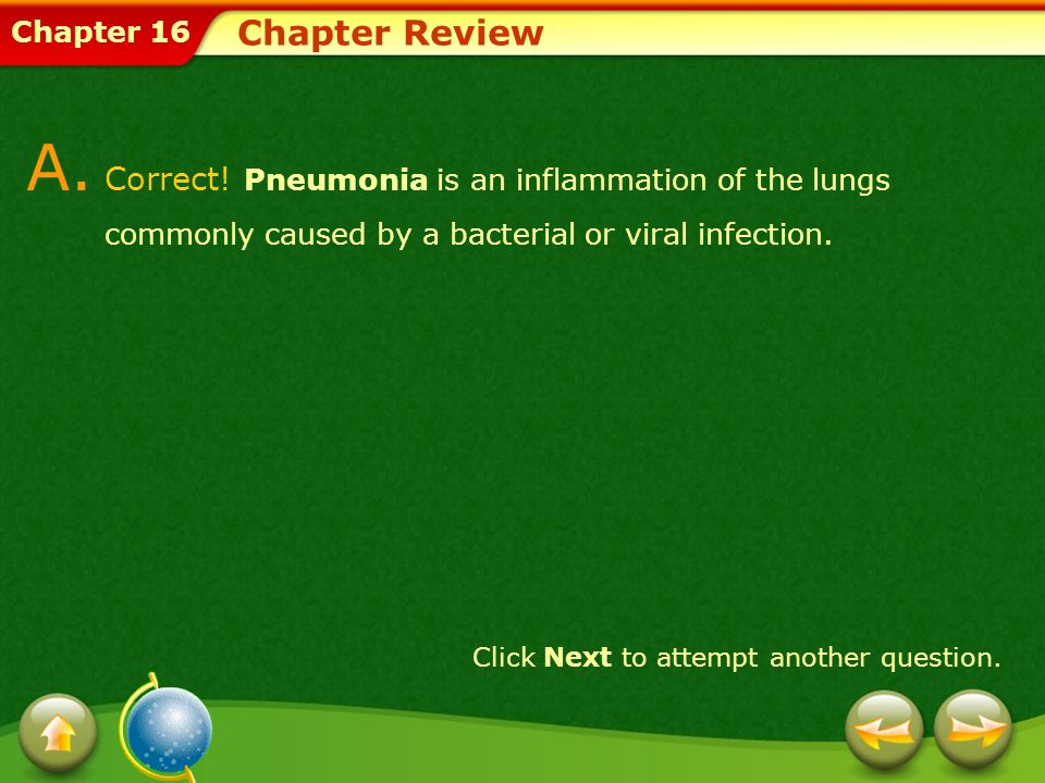 Chapter Review A. Correct! Pneumonia is an inflammation of the lungs commonly caused by a bacterial or viral infection.