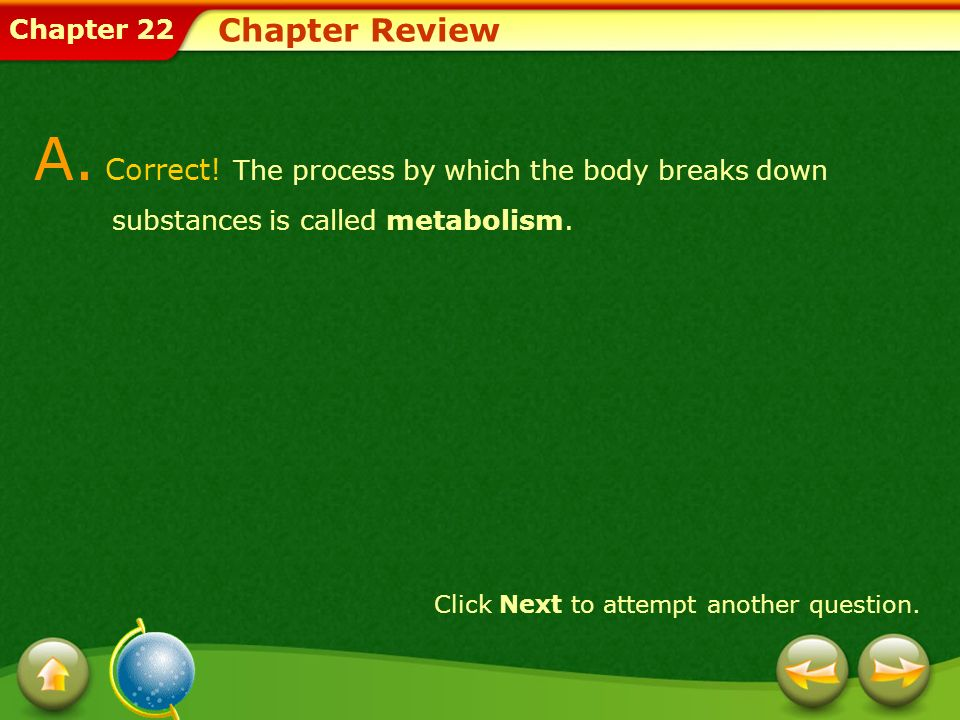 Chapter Review A. Correct! The process by which the body breaks down substances is called metabolism.