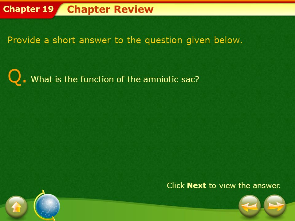 Q. What is the function of the amniotic sac