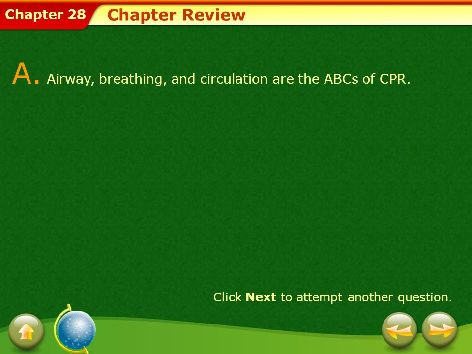 A. Airway, breathing, and circulation are the ABCs of CPR.