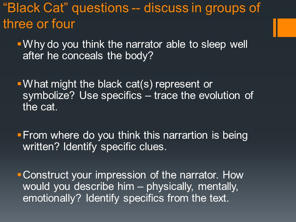 black cat discussion questions