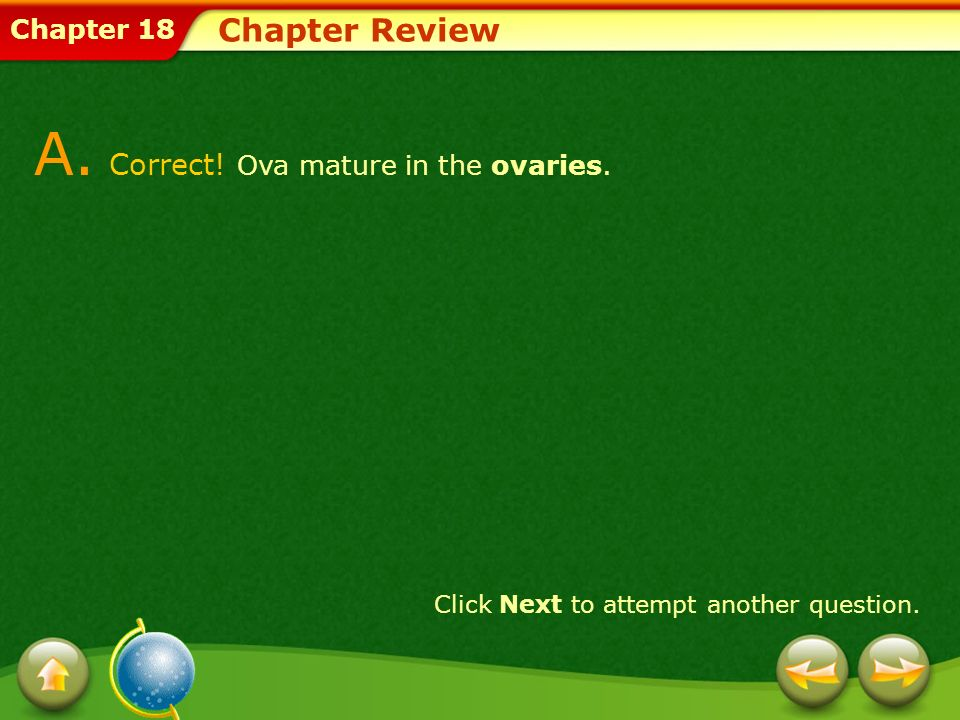 A. Correct! Ova mature in the ovaries.