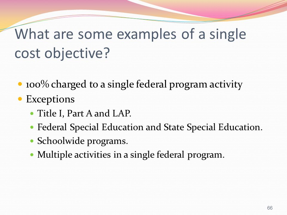 What are some examples of a single cost objective