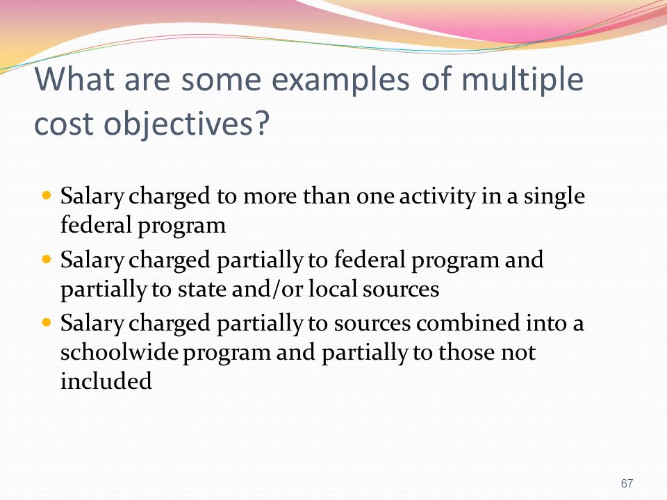 What are some examples of multiple cost objectives