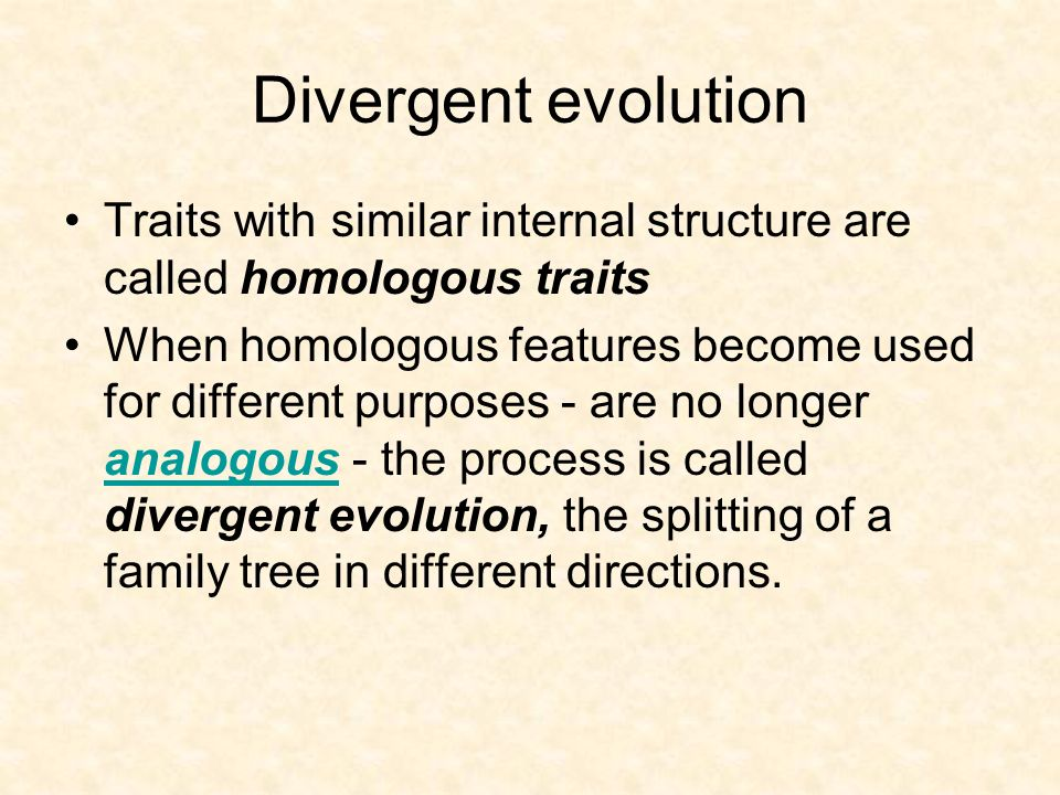 Divergent evolution Traits with similar internal structure are called homologous traits.