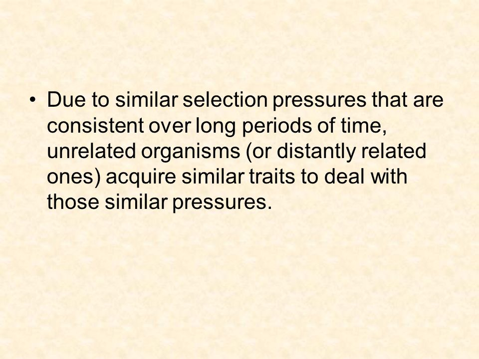 Due to similar selection pressures that are consistent over long periods of time, unrelated organisms (or distantly related ones) acquire similar traits to deal with those similar pressures.
