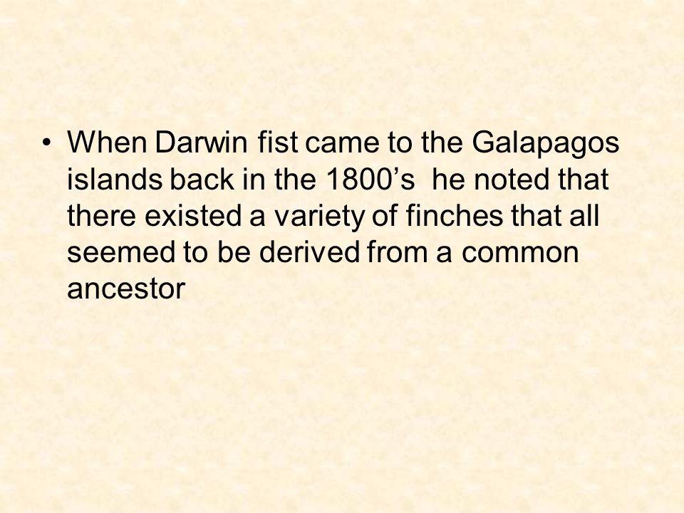 When Darwin fist came to the Galapagos islands back in the 1800's he noted that there existed a variety of finches that all seemed to be derived from a common ancestor