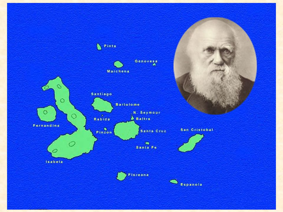 http://www.rit.edu/~rhrsbi/GalapagosPages/Map.html