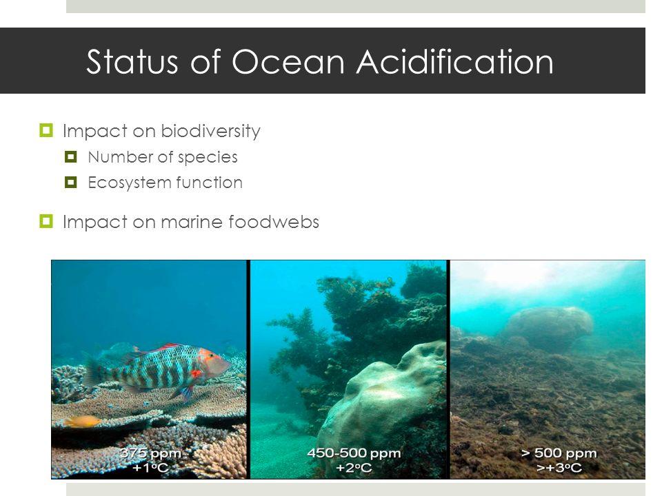 Status of Ocean Acidification