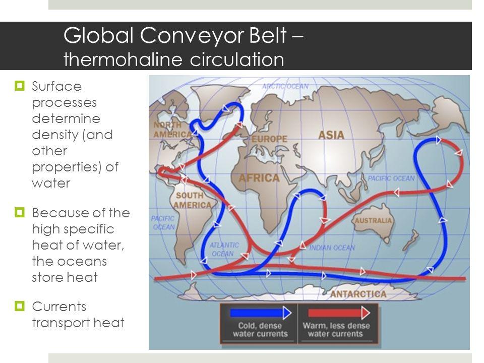 Global Conveyor Belt – thermohaline circulation