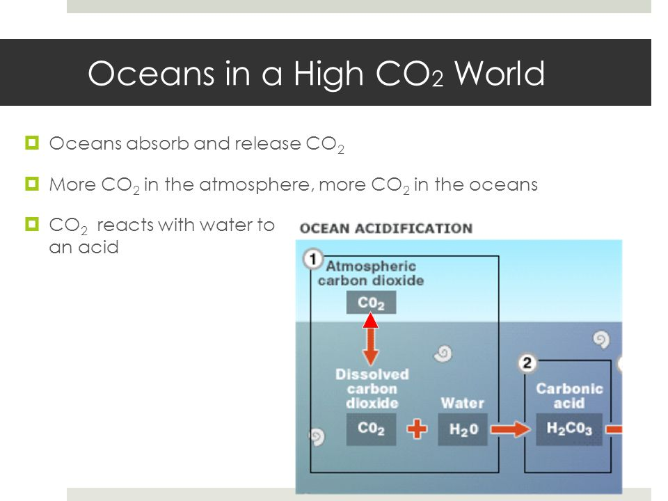 Oceans in a High CO2 World
