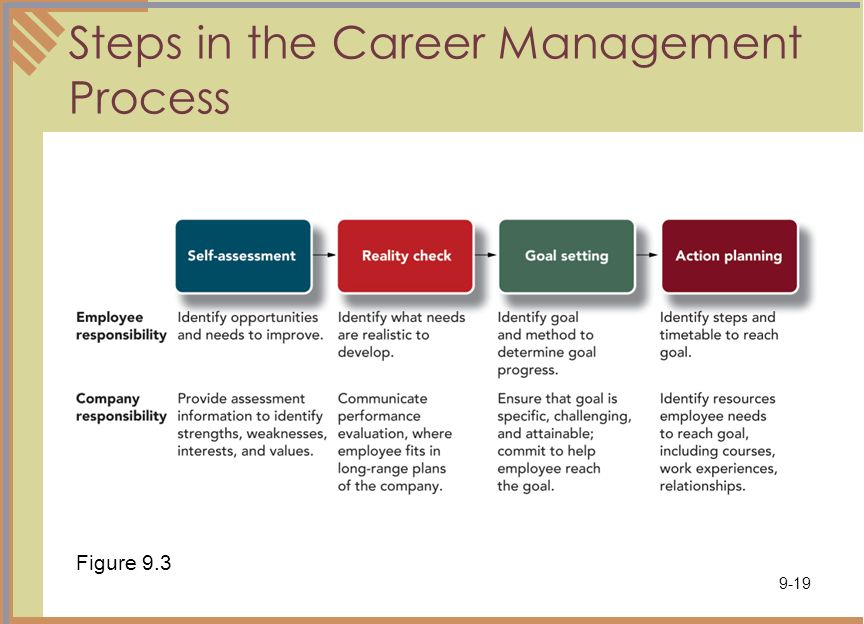 career management essay Essay on career management in the 21st century - the necessity for career management in the 21st century many people determine what they want to be when they grow up just as soon as they are able to talk, but the truth is, by the time they graduate high school, they change your mind at least five times.