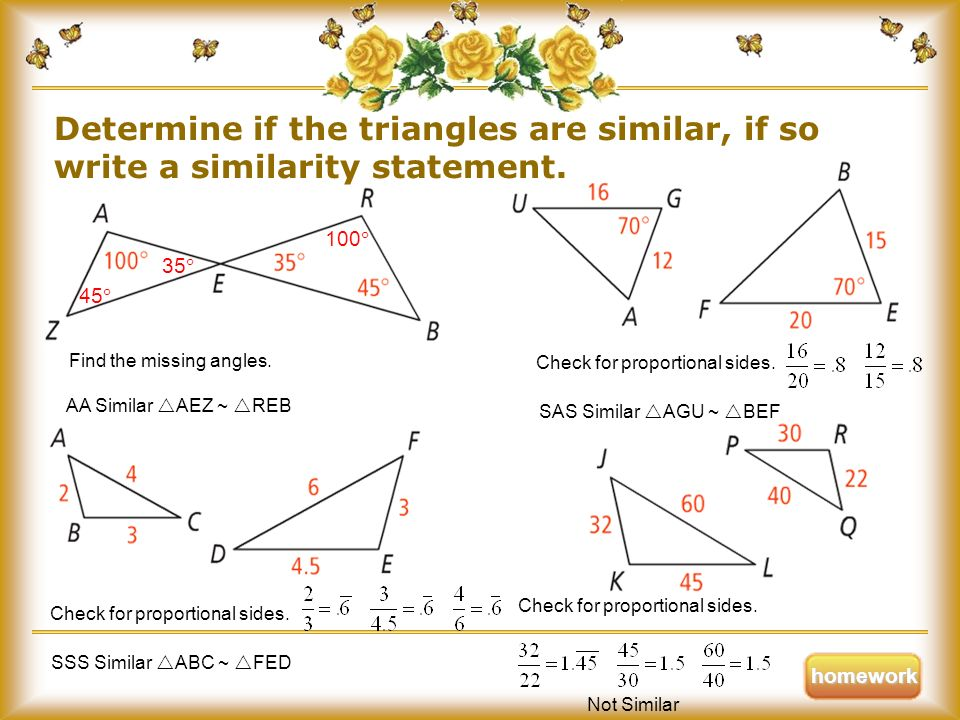A Great Explanation of Similarity Statement in Geometry With Examples