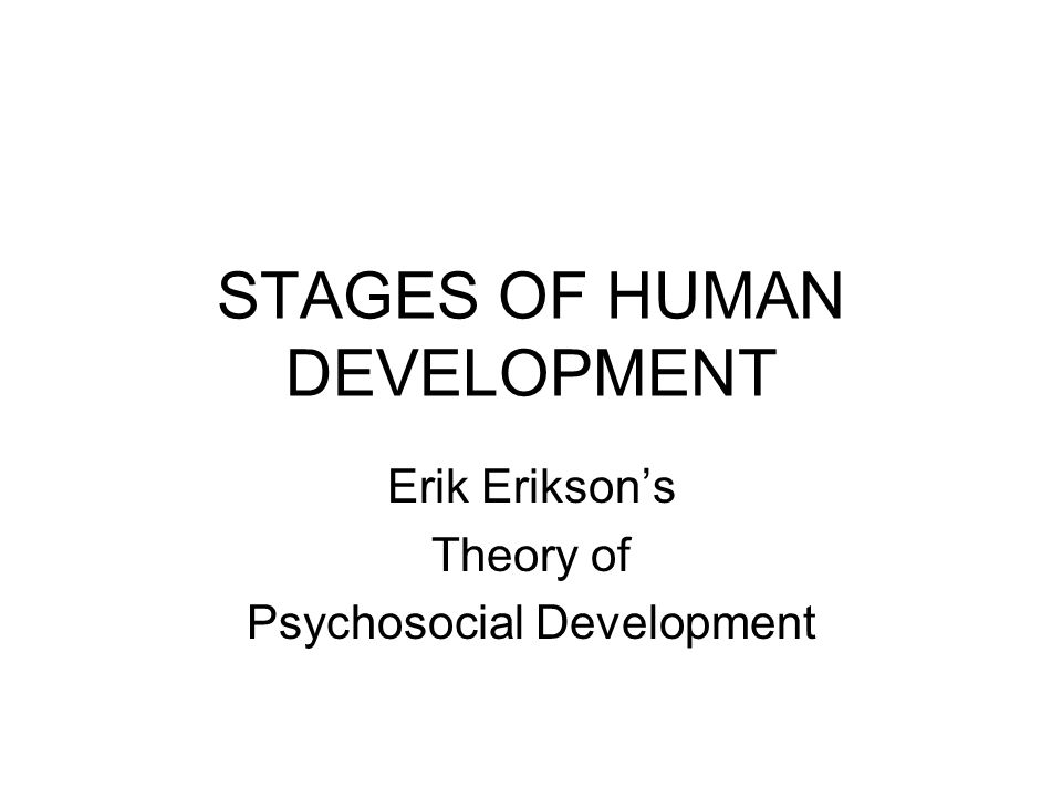 what are the stages of human development