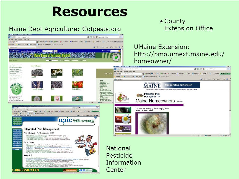 Resources County Extension Office Maine Dept Agriculture: Gotpests.org