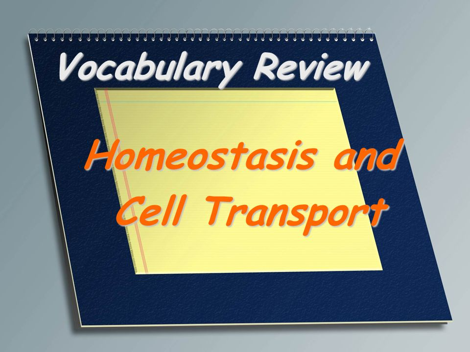 Homeostasis And Cell Transport Ppt Video Online Download