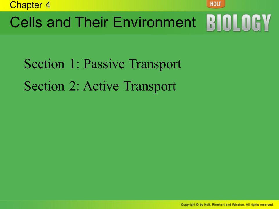 Cells and Their Environment - ppt video online download
