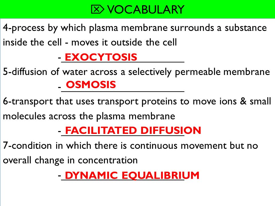 WHAT YOU WILL LEARN 7.4 CELLULAR TRANSPORT - ppt download